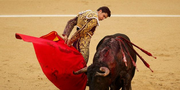 Spanish bullfighter Daniel Luque performs with an 'El Puerto de San Lorenzo' ranch fighting bull during a bullfight of the Sa