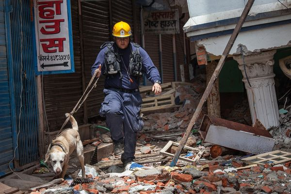 KATHMANDU, NEPAL - APRIL 30: A member of Los Angeles County Fire Department guides his sniffing dog through a collapsed build
