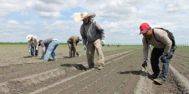Seasonal Farm Workers Pay High Price So We Don T Have To Huffpost