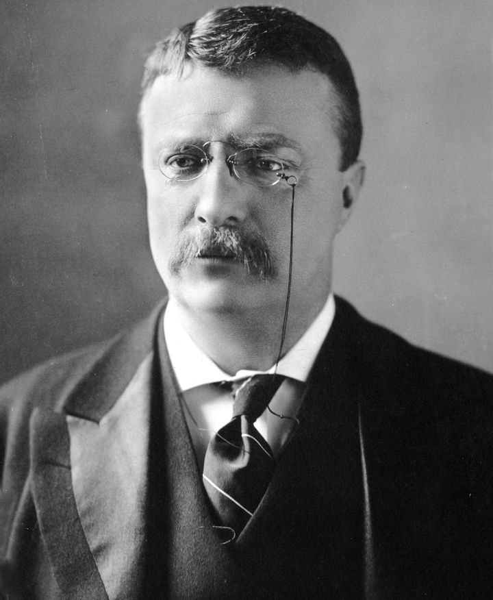 Description 1 Theodore Roosevelt, circa 1902 | Source cph.3a50046 | Author M. P. Rice | Date~ | 1902 | Permission  | other_ve
