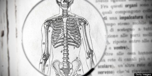 Magnifying glass on antique medical book showing skeleton parts