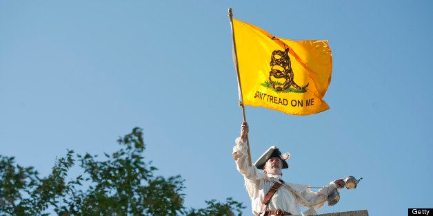 UNITED STATES - AUGUST 11:  William Temple of the Brunswick, Ga., a member of the Golden Isle Tea Party, waves a flag outside