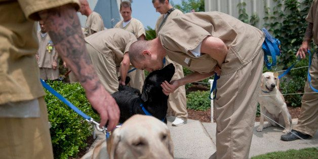 UNITED STATES - JUNE 30: Inmates prepare to head back to their cells after training the dogs for the day. Training the dogs i