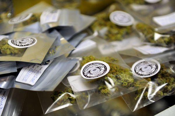 Packages of marijuana labeled for recreational use are spread out on a counter at Northern Lights Cannabis Co in Edgewater, C