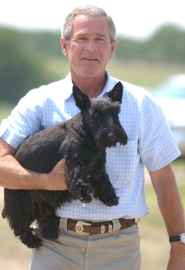 U.S. President George W. Bush carries his dog, Barney, after meeting with the media near his ranch August 13, 2003 in Crawfo