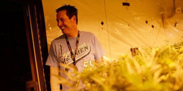 DENVER MARCH 25: Pete Williams, Chief Operating Officer of Medicine Man, is in marijuana growing room. Denver, Colorado. Marc