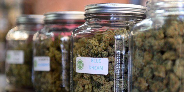 The highly-rated strain of medical marijuana 'Blue Dream' is displayed among others in glass jars at Los Angeles' first-ever cannabis farmer's market at the West Coast Collective medical marijuana dispensary, on the fourth of July, or Independence Day, in Los Angeles, California on July 4, 2014 where organizer's of the 3-day event plan to showcase high quality cannabis from growers and vendors throughout the state. A vendor is seen here responding to questions and offering a whiff of the strain 'Skyjack'. AFP PHOTO/Frederic J. BROWN (Photo credit should read FREDERIC J. BROWN/AFP/Getty Images)