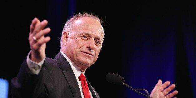 DES MOINES, IA - JANUARY 24:  U.S. Representative Steve King (R-IA) speaks to guests  at the Iowa Freedom Summit on January 2