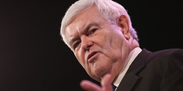 DES MOINES, IA - JANUARY 24:  Former Speaker of the U.S. House of Representatives Newt Gingrich speaks to guests at the Iowa