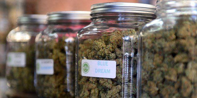 The highly-rated strain of medical marijuana 'Blue Dream' is displayed among others in glass jars at Los Angeles' first-ever