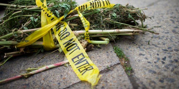 PHILADELPHIA, PA - MAY 15:  Vegetation refuse is wrapped in police 'do not enter' tape and put out for morning trash collecti