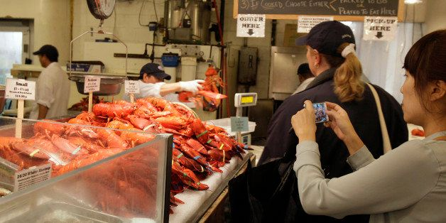 In this May 15, 2012 photo, a patron photographs live lobsters displayed for sale at New York City's Chelsea Market. One hu
