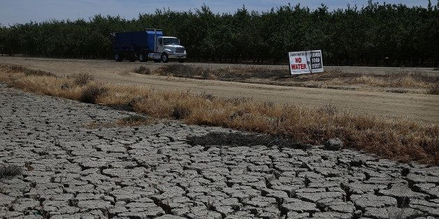 FIREBAUGH, CA - APRIL 24:  Dry cracked earth is visible near an almond orchard on April 24, 2015 in Firebaugh, California. As