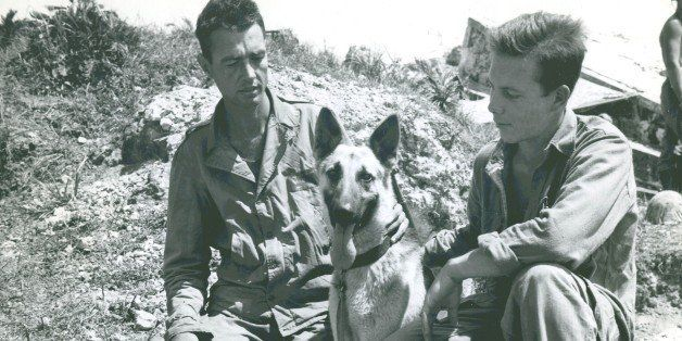 "The caption on this photograph reads ""Enemy Canine-""Motobu"", a German Shepherd war dog of the Japs, displays friendl"