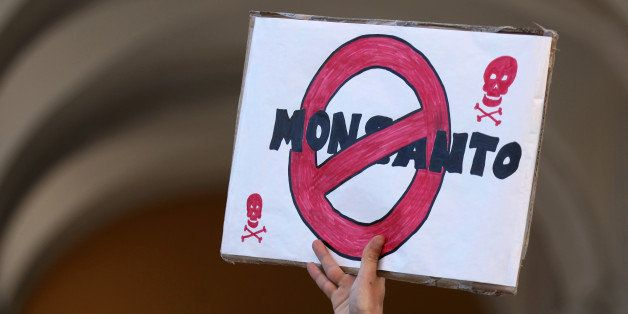 A demonstrator holds a poster during a World March Against Monsanto event in Lisbon Saturday, May 23, 2015. Marches and ralli