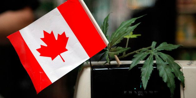 A cash register is adorned with a Canadian flag and imitation marijuana leaves at the BC Marijuana Party Headquarters in Vanc