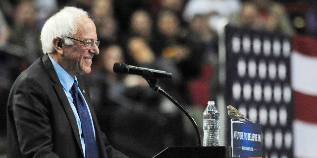 Democratic presidential candidate Sen. Bernie Sanders, I-Vt., smiles as a bird lands on his podium as he speaks during a rall