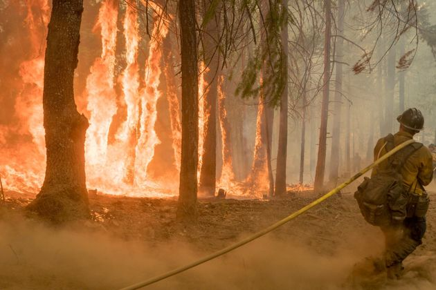 A firefighter fights a blaze near Yosemite National Park in