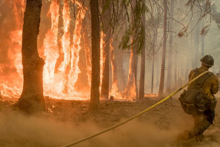 A firefighter fights a blaze near Yosemite National Park in August.