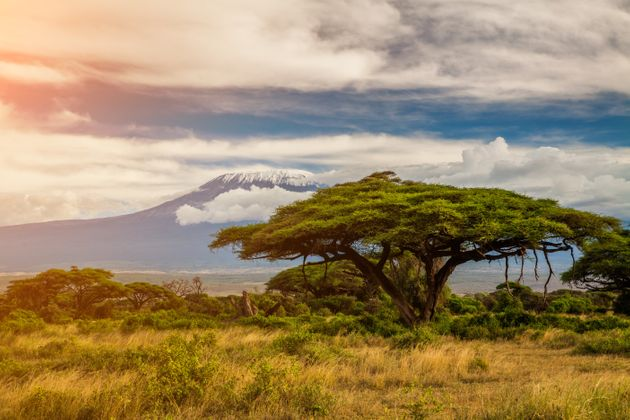 Amboseli National Park,