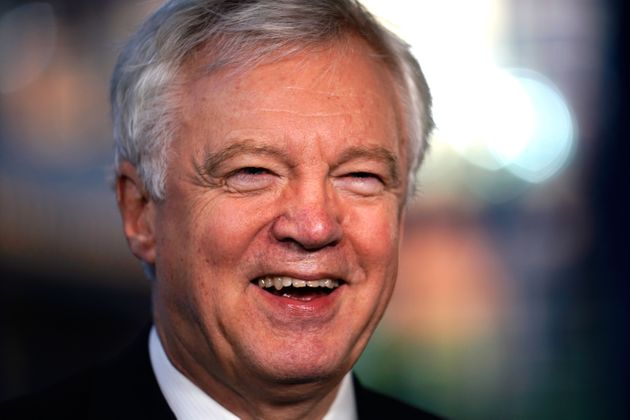 Tories Will Suffer A 'Dire' Election Defeat If May Pushes Ahead With Brexit Plan, David Davis