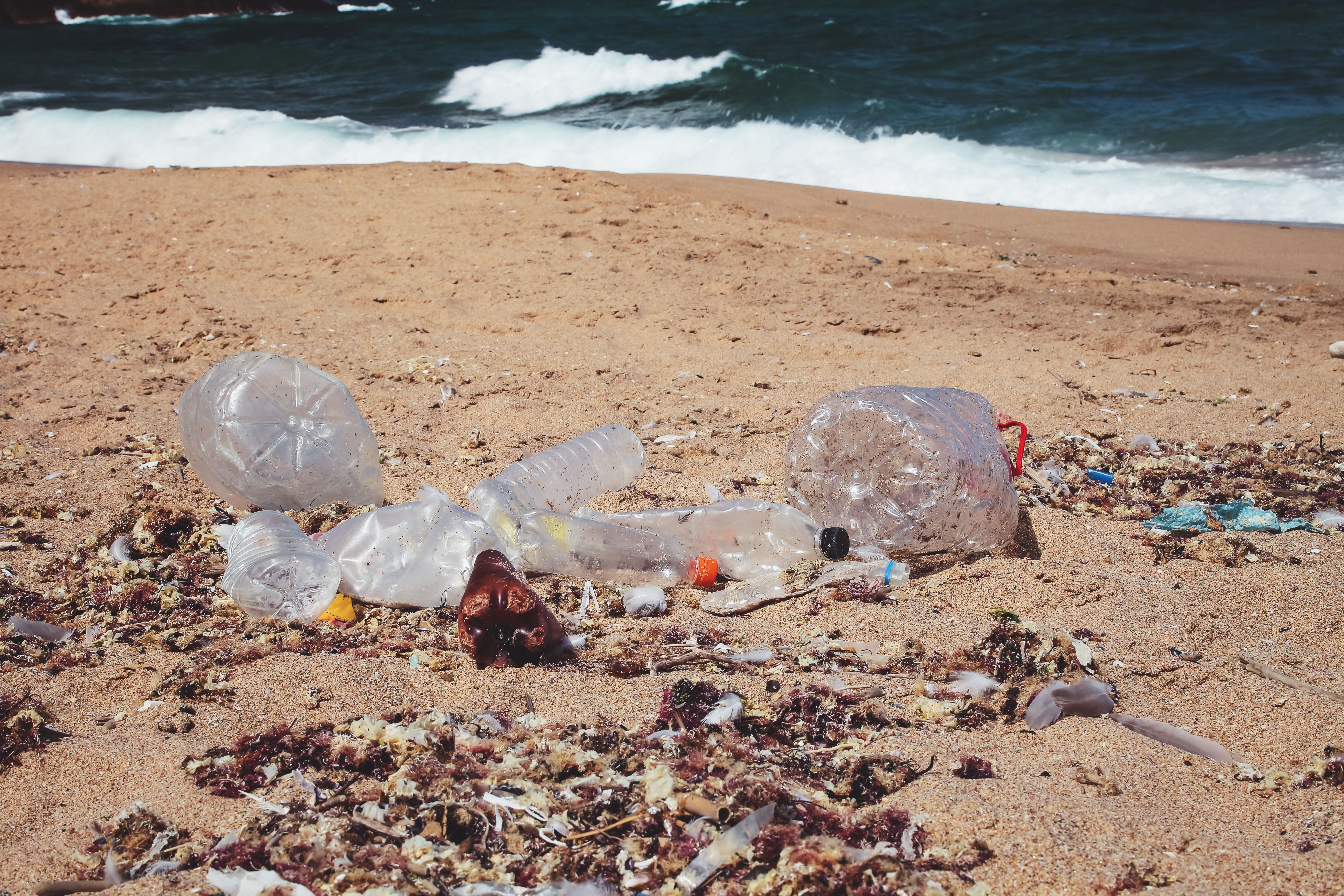 Coca-Cola, PepsiCo And Nestlé Are 'Top Plastic Polluters' On