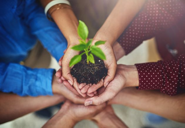 5 start-up environnementales marocaines dans le