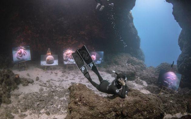 The Underwater Gallery: ο ελληνικός βυθός αποκαλύπτεται «με μια