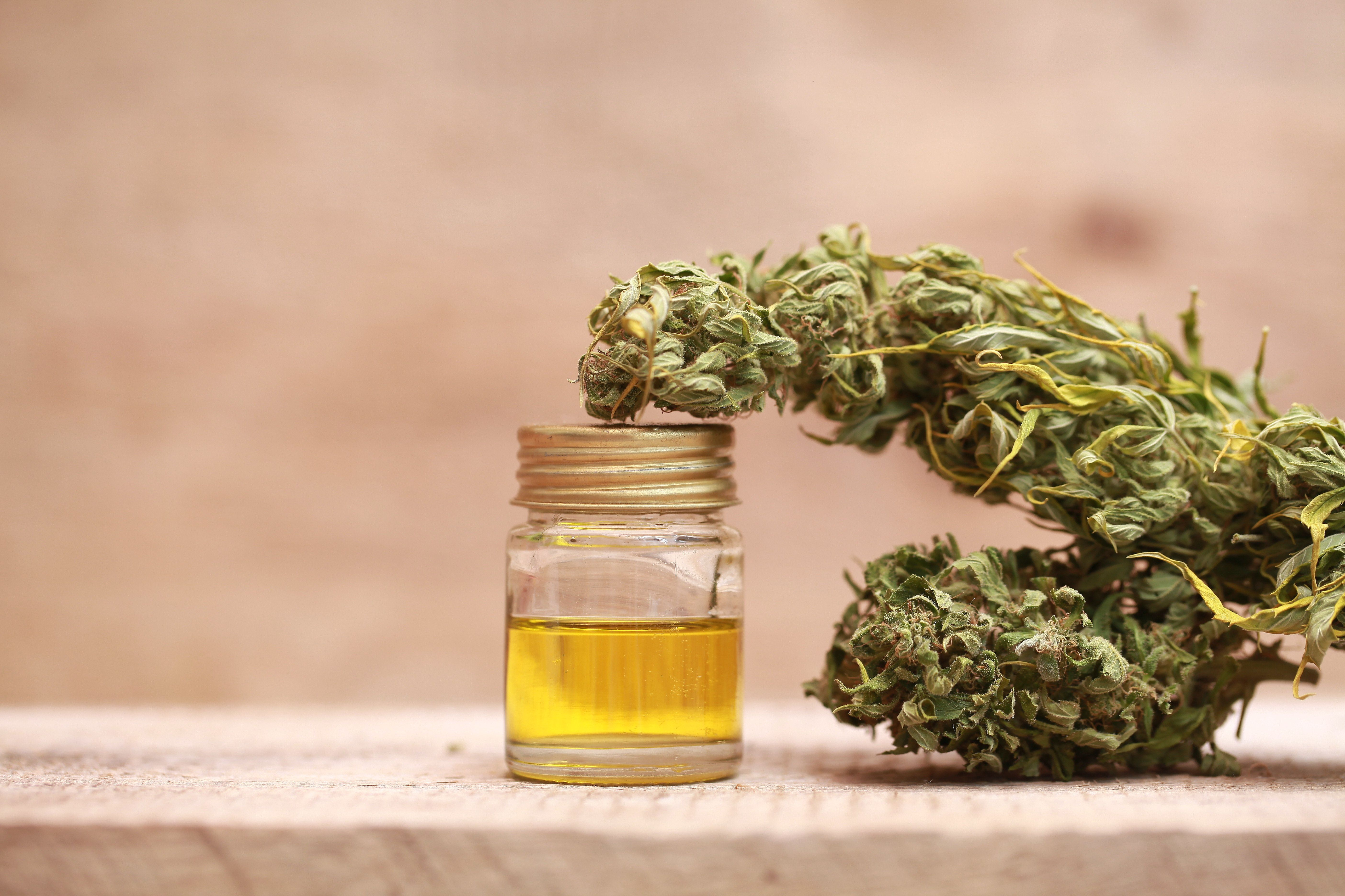 Medicinal Cannabis Oil Prescriptions Will Be Available From 1st