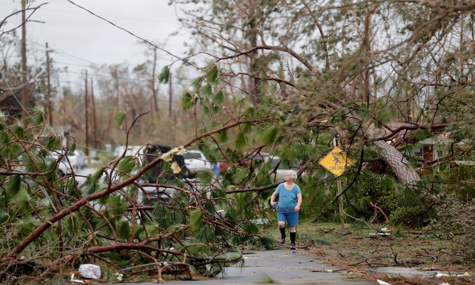 Carol Ralph walks through downed trees blocking her heavily damaged neighborhood just after the hurricane passed through Pana