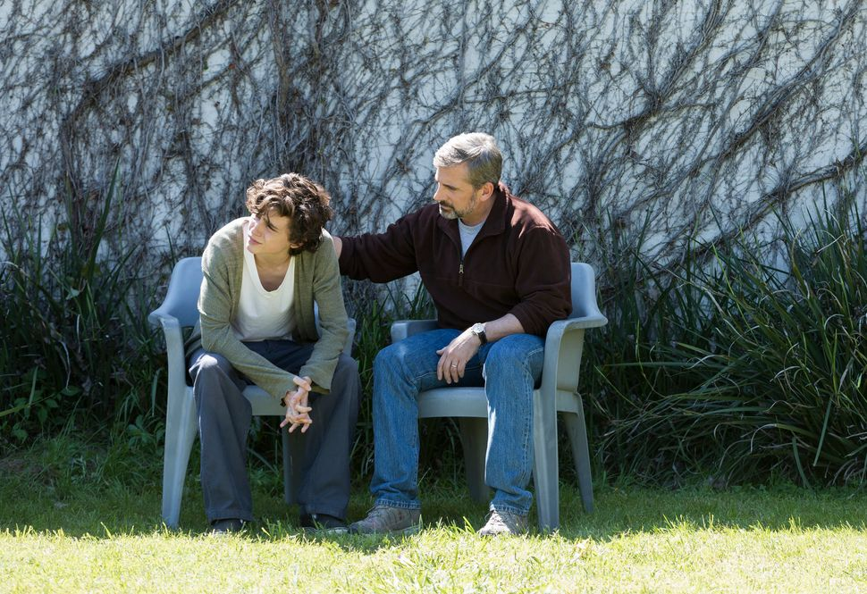 "In ""Beautiful Boy,"" a family's most private ordeal with meth addiction plays out on the big screen."