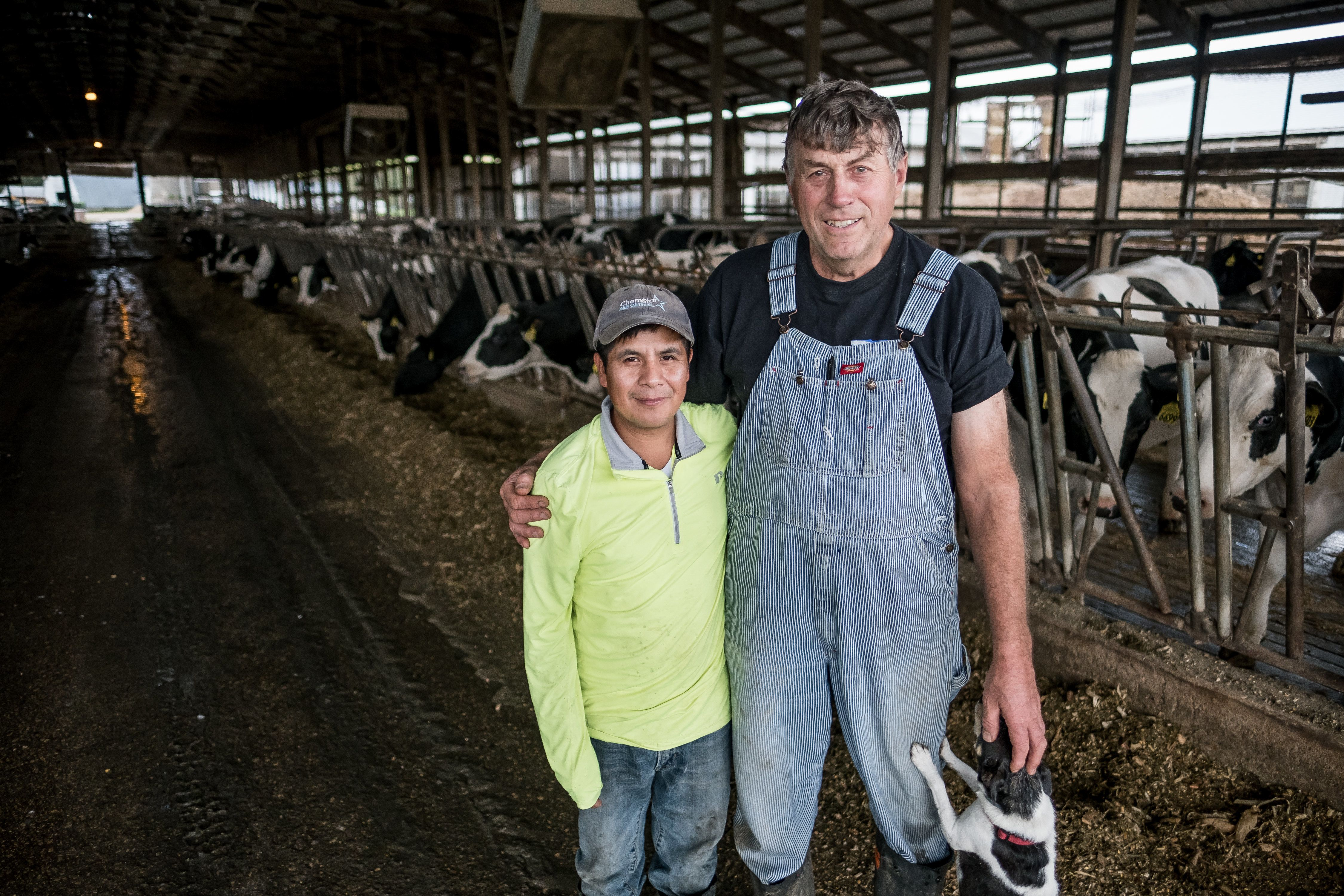 (L-R) Roberto Tecpile, a farm worker from Veracruz, Mexico, and John Rosenow, owner of Rosenholm dairy farm, pose for a portrait at the farm in Cochrane, WI on October 10, 2018. Tecpile has been working for Rosenow's farm for the last 4 years, with hopes of returning to his family in Mexico in a year or two. Rosenow's farm participates in the Puentes/Bridges program, a non-profit organization that arranges annual trips to Mexico to help foster better understanding and relationships between farmers and their workers.