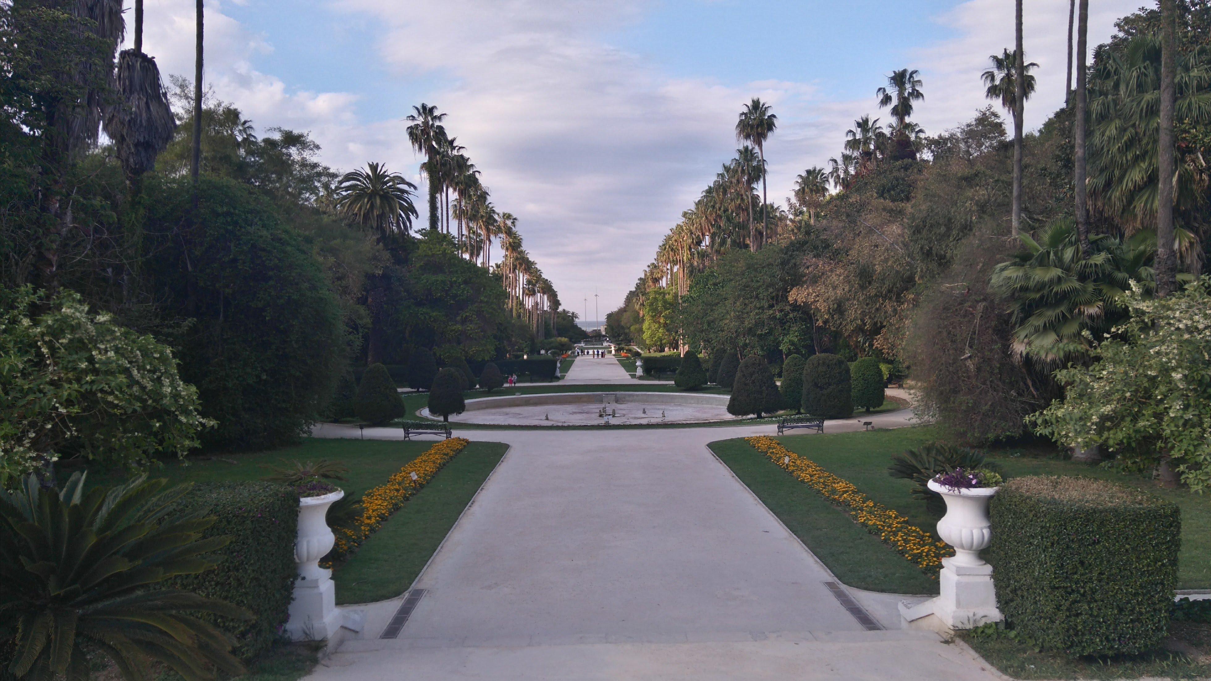 Le Jardin d'essai du Hamma conforme aux normes pour être classé jardin
