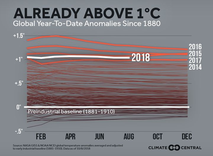 This graph shows the yearly temperature anomaly, every year since 1880.