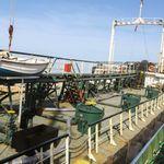 Libye: la principale raffinerie du pays pourrait suspendre ses