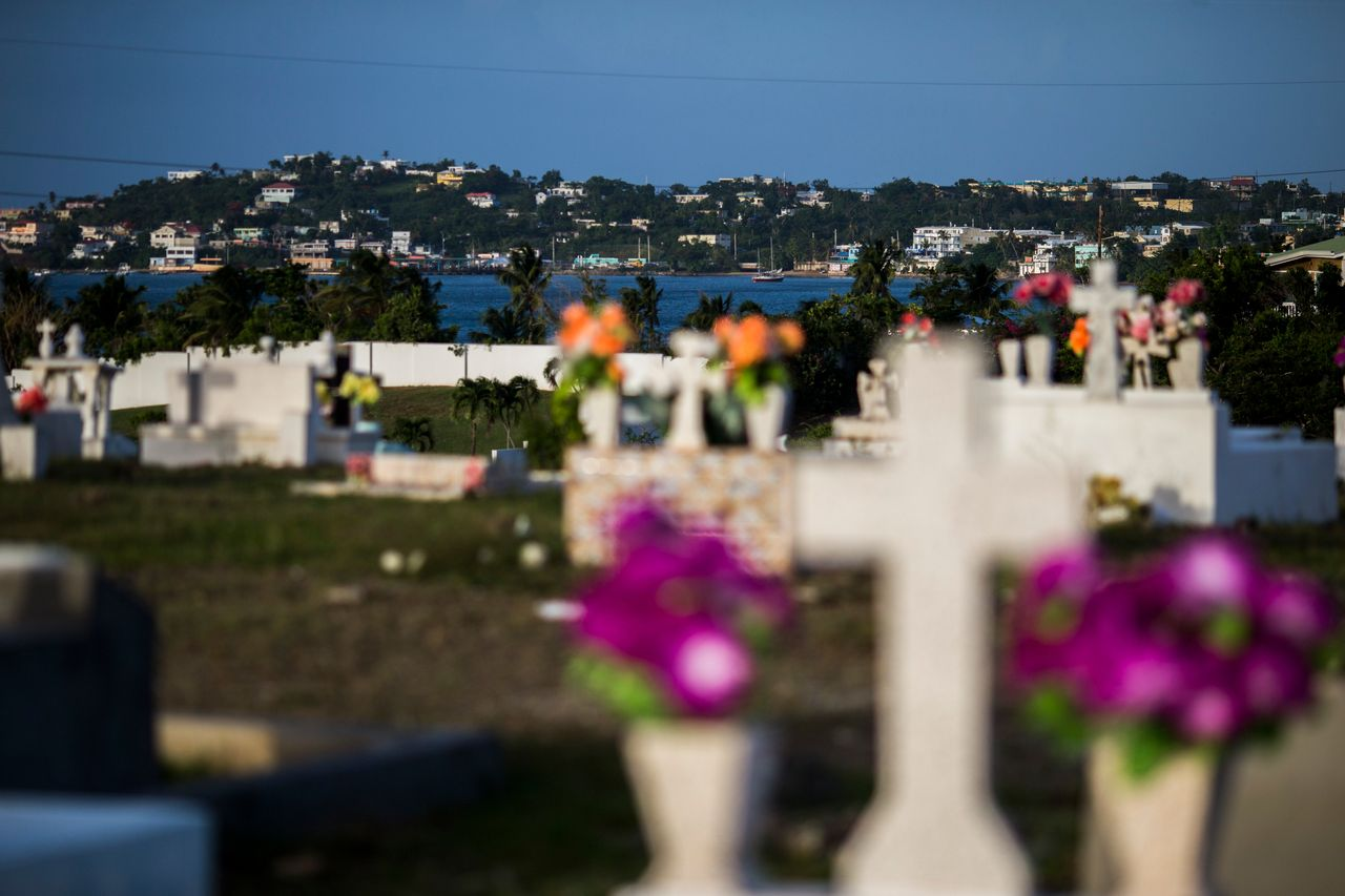 View of the sea from a cemetery in Vieques.