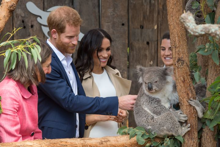 The Duke and Duchess of Sussex meet a Koala called Ruby during a visit to Taronga Zoo in Sydney.