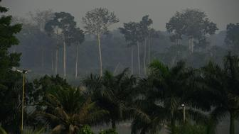 Smoke from deforested areas hangs in the air near Labrea in the Western Amazon region of Brazil, on September 20, 2017.  Parts of the Western Amazon rainforest have suffered some of the heaviest deforestion in the Amazon as a whole, with figures puting it at a third higher than last year. Illegal logging has been hard to police in a country in economic crisis.  / AFP PHOTO / CARL DE SOUZA / TO GO WITH AFP STORY by PAULA RAMON        (Photo credit should read CARL DE SOUZA/AFP/Getty Images)