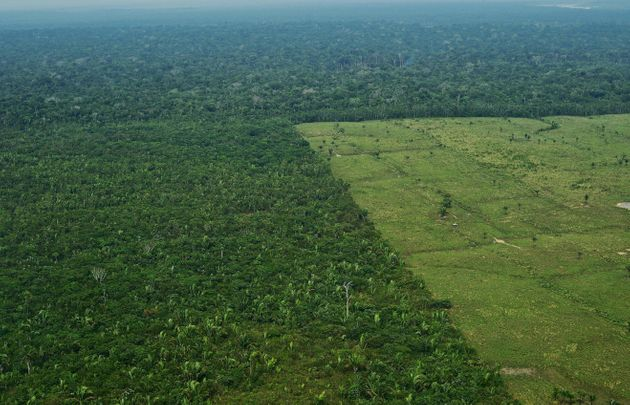 Aerial view of deforestation in the Amazon's western Amazon region in Brazil in September