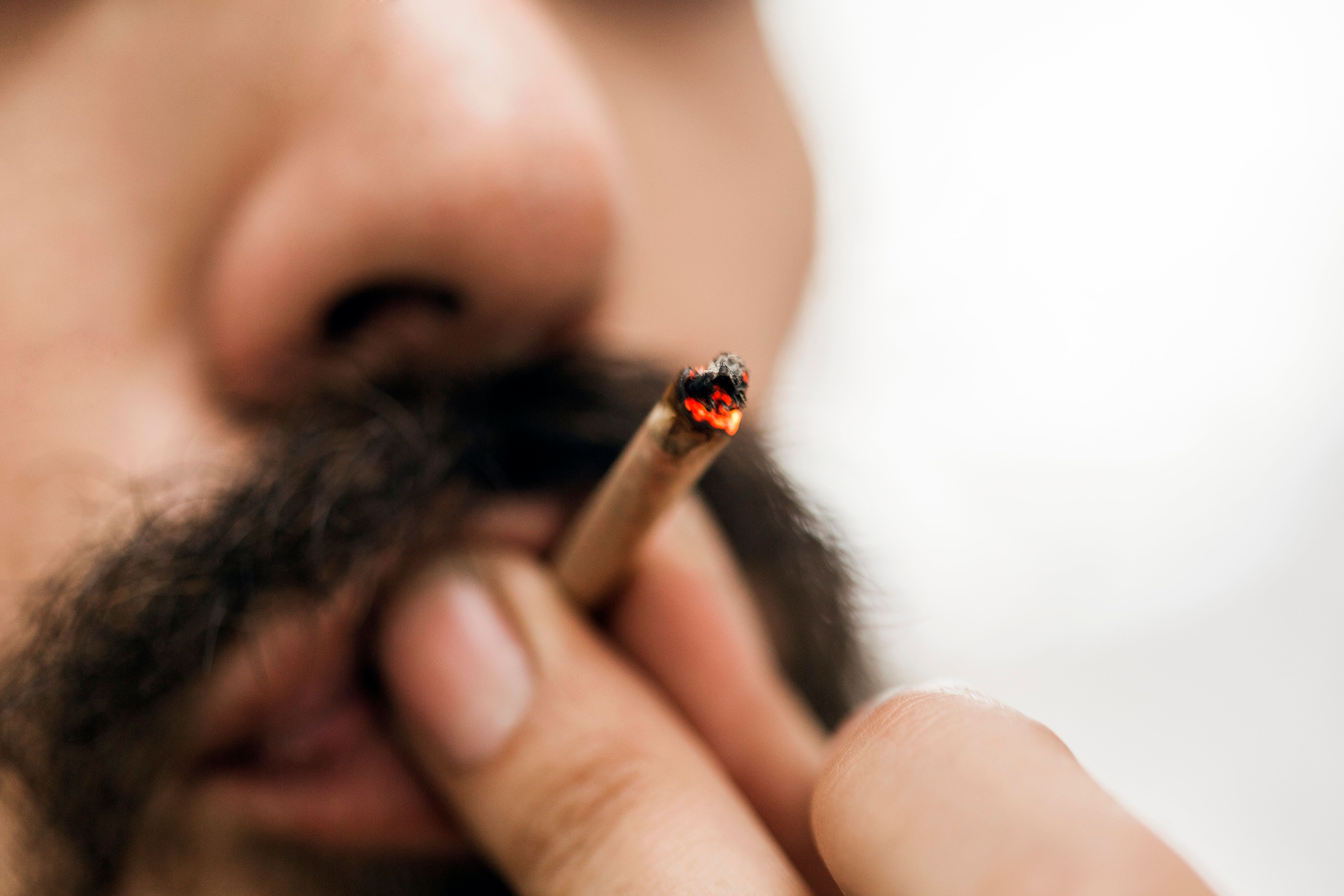 Planning To Visit Canada For Legal Weed? Don't Expect Amsterdam
