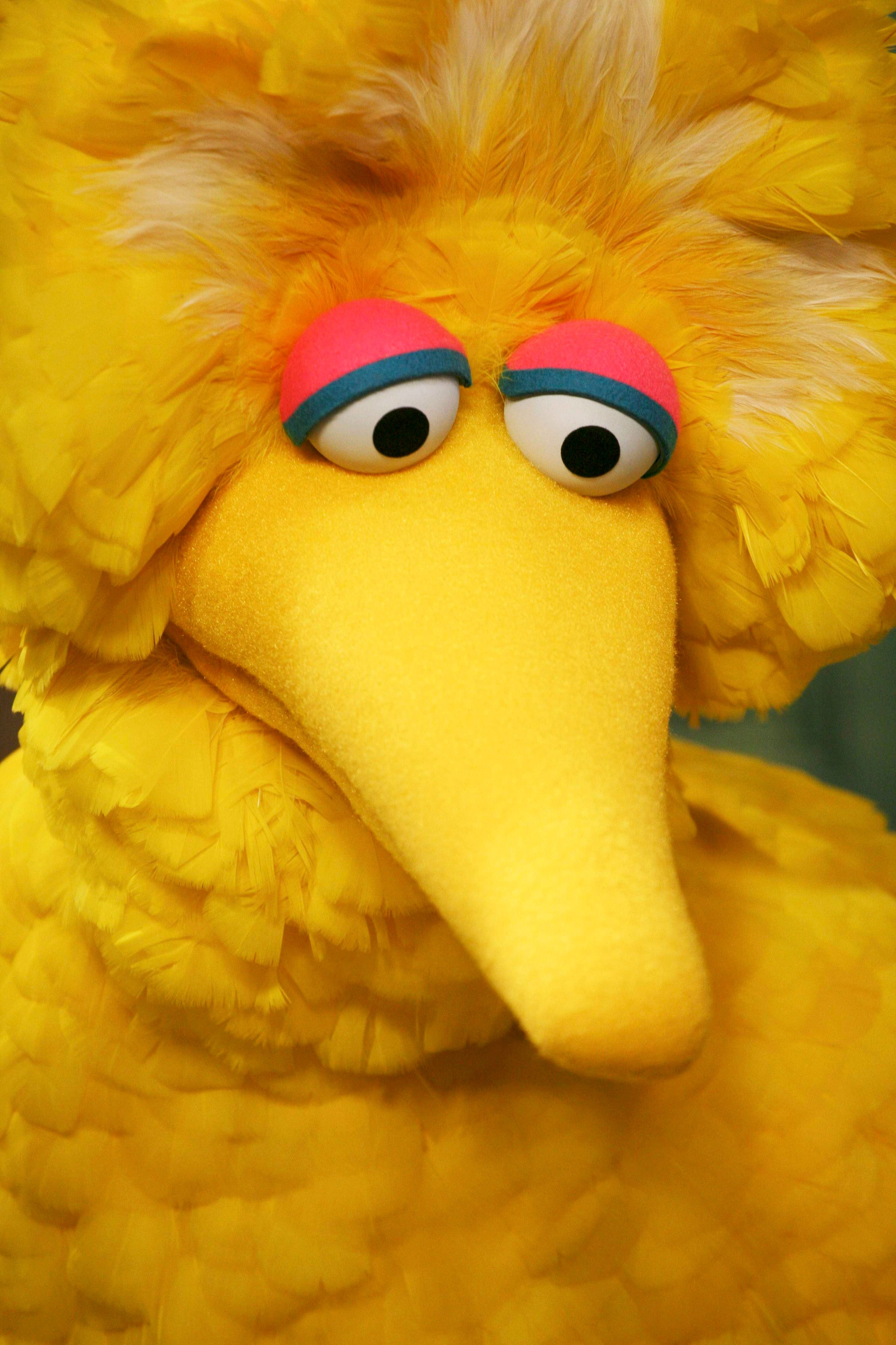 "FILE - In this April 10, 2008 file photo, Big Bird is seen during the taping of an episode of ""Sesame Street"" in New York.  (AP Photo/Mark Lennihan, file)"