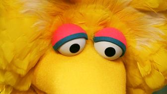 """FILE - In this April 10, 2008 file photo, Big Bird is seen during the taping of an episode of """"Sesame Street"""" in New York.  (AP Photo/Mark Lennihan, file)"""