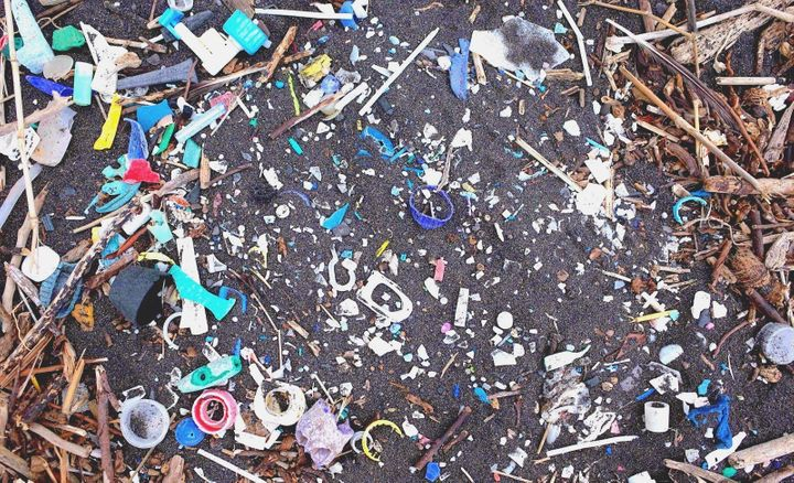 Plastics on St. Helena's shore.