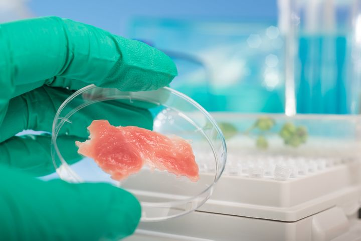 Will people want to eat meat grown in a lab?