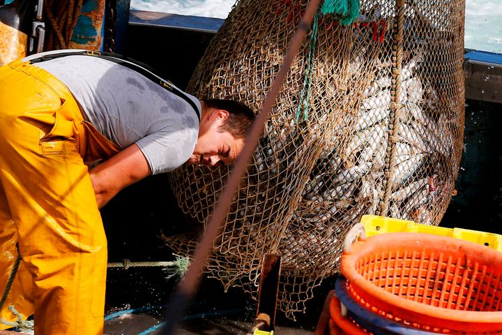 Nearly 90 percent of the world's marine fish stocks are now fully exploited, overexploited or depleted.