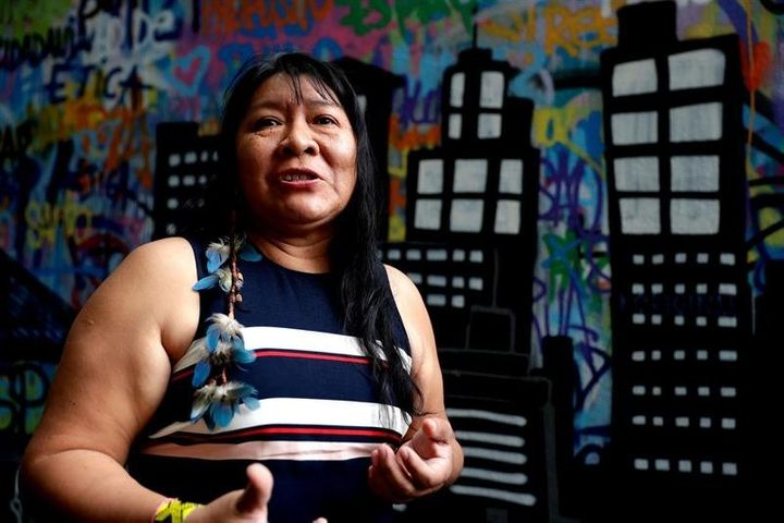 Joenia Wapichana will be the first indigenous woman to serve in the House of Representatives.