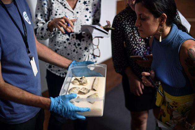 Βραζιλία: Βρέθηκε σπασμένο στα αποκαΐδια του Μουσείου το κρανίο της
