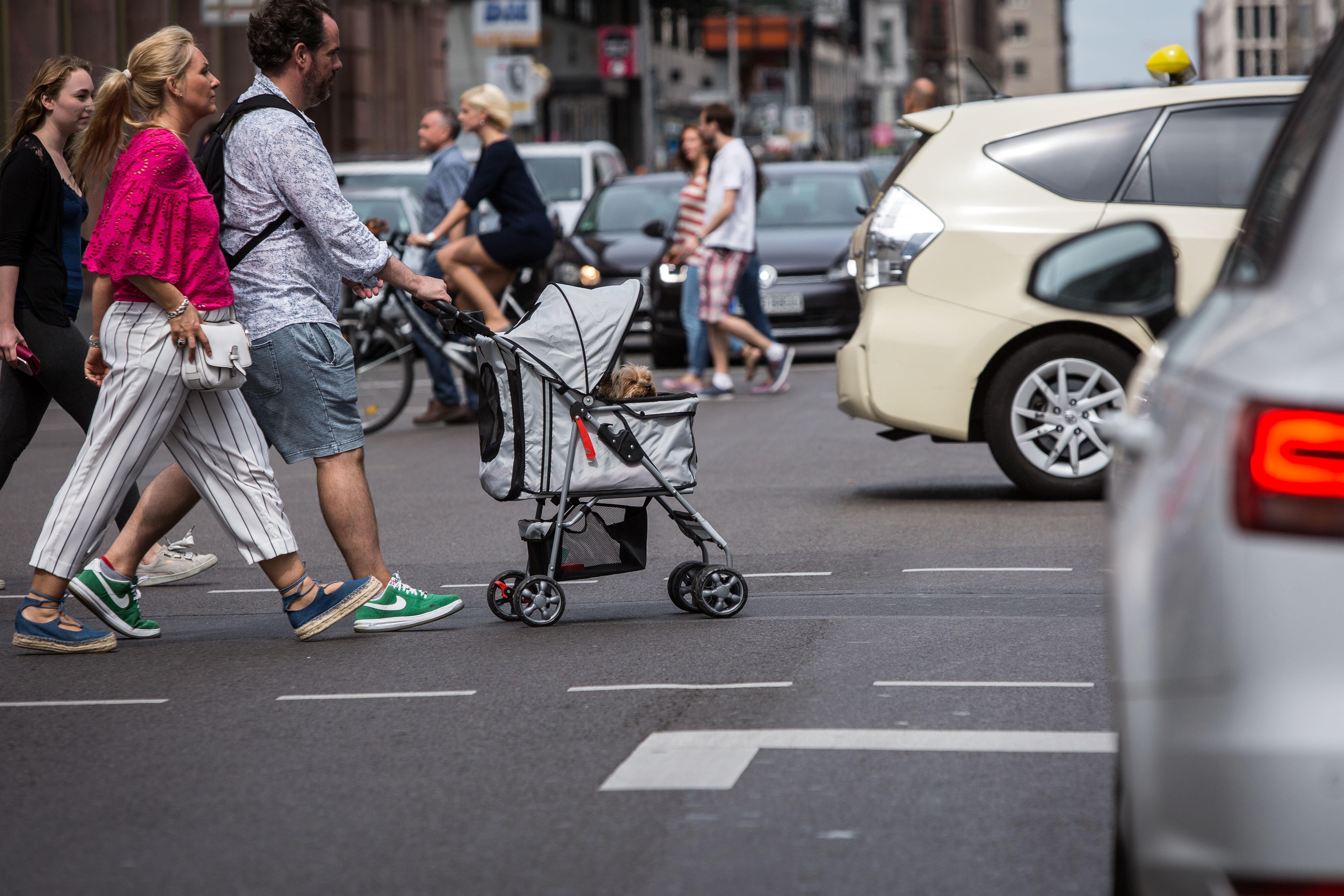 Polizei kontrolliert Paar mit Kinderwagen – doch darin liegt nicht nur ein Baby