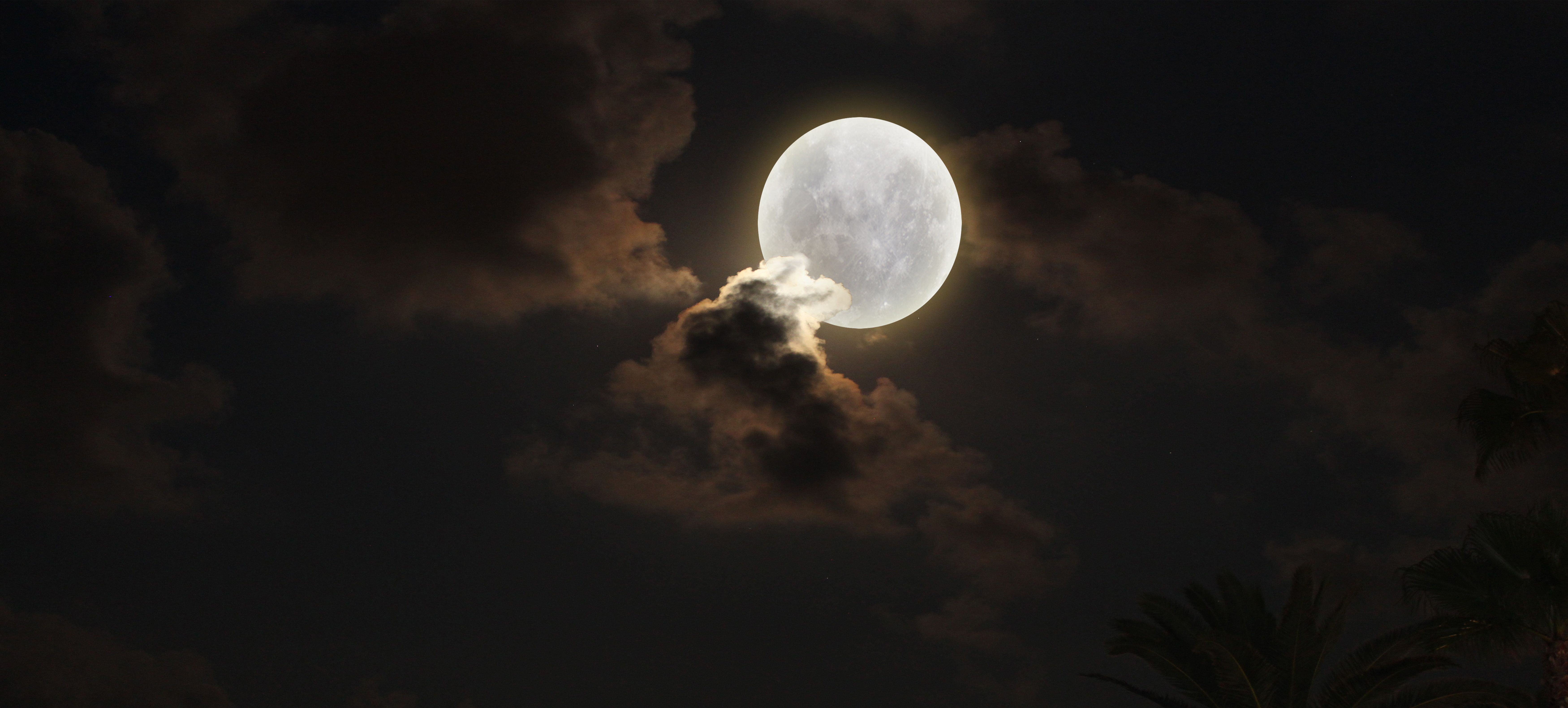 The Moon Puzzle: Ήρθε από τη Σελήνη και βγήκε σε δημοπρασία - Πόσο
