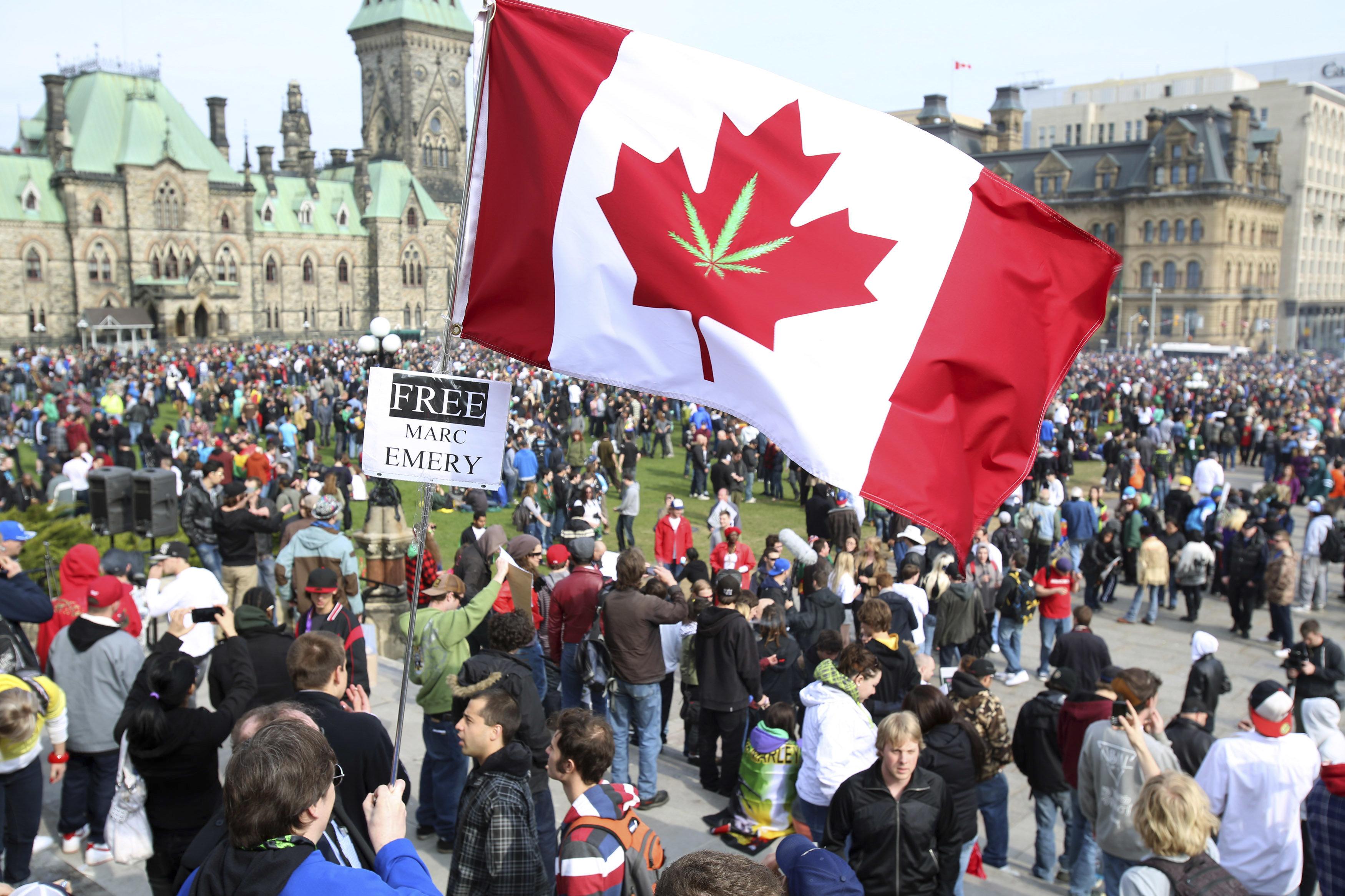 캐나다가 전 세계 마리화나 산업을 주도할 것으로